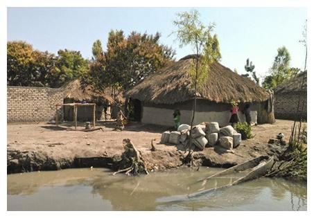 Zambia 2 paludi (4)